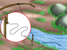 4 ways to make a snare trap wikihow