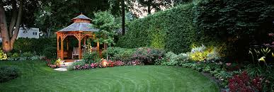 cost of landscaping your backyard in