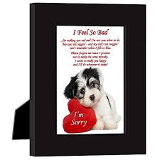 sorry gift ideas to help you apologize