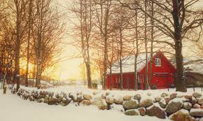 Wallpaper Trees Winter Light Sunset Sky Sun Snow Nature Silhouette Norway Barn Fence Landscape Stones January Softlight Tj Me 5002x2973 1127313 Hd Wallpapers Wallhere