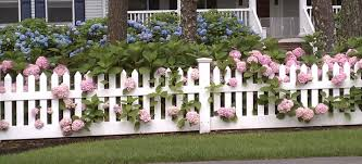 Planting A Garden My Uncommon Slice Of Suburbia Picket Fence Garden White Picket Fence Backyard Fences