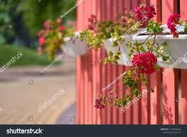 Outdoor Flower Pot Hanging On Wooden Stock Photo Edit Now 1514055545