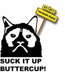 Home Garden Grumpy Cat Flippin Off Suck It Up Cupcake Funny Diecut Vinyl Decal Sticker Decor Decals Stickers Vinyl Art