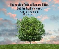 aristotle quotes to enlighten you com