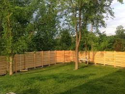 Inexpensive Dog Fence Ideas Procura Home Blog