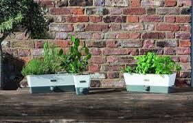 mason self watering indoor herb garden