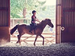 gift ideas for horse owners and