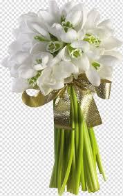 باقة ورد زهرة الثلج حديقة الورود توليب باقة من الزهور Png تحميل