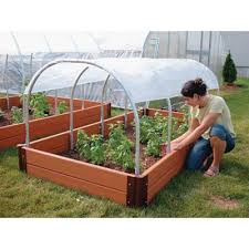 mini cold frame container gardening