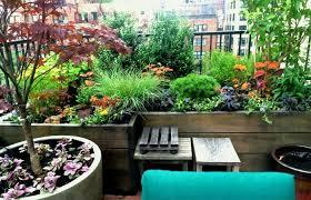 apartment patio backyard veggie image