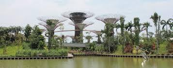 Singapore S Gardens By The Bay Garden Travel Hub