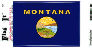 Montana State Flag Vinyl Decal 3 5 X 5 Us Flags