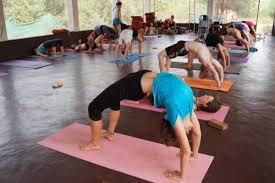 best 10 yoga teacher in india