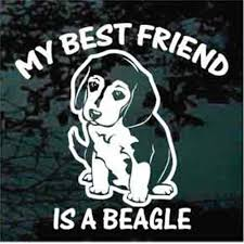 Beagle Car Decals Stickers Decal Junky