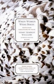 Michael J Wilson: Dust Jacket : When Women Were Birds