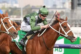 2020 Cox Plate Day Tips & Preview ...