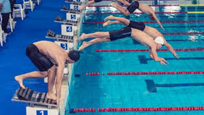 sharpening your swimming theories on