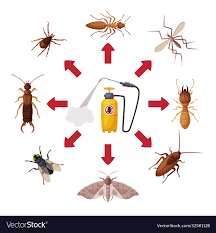 Pest control service pressure sprayer chemical Vector Image