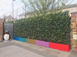 Ambler Installs Green Screens To Combat Playground Air Pollution Ambler Primary School