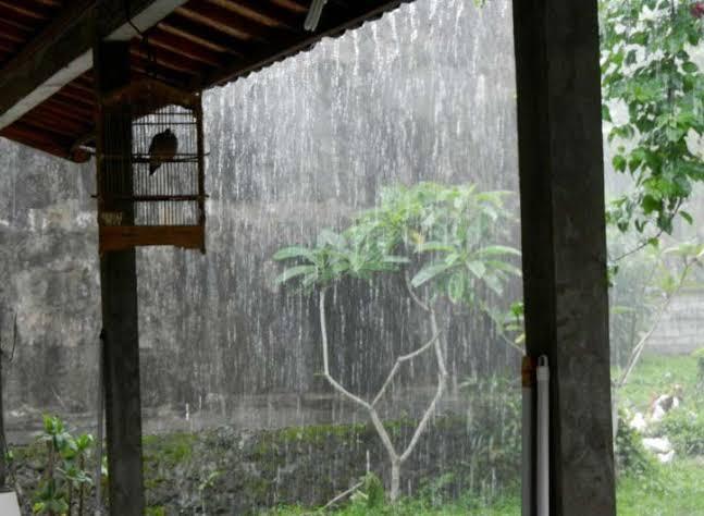 Afbeeldingsresultaat voor musim hujan desa