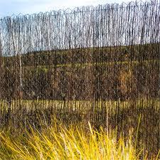 Economy 1 8 X 4 0m Brushwood Screen Fence Bunnings Warehouse