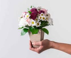 Resultado de imagem para flores campestres