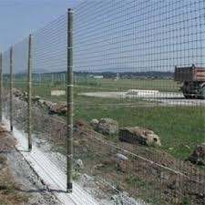 Deer Fence Wayfair