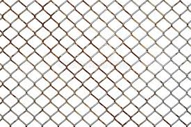 2 124 Chicken Wire Photos Free Royalty Free Stock Photos From Dreamstime