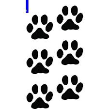 Amazon Com Paw Prints Dog Cat Vinyl Decals Stickers 6 Set Puppy Cute Girl Animal Tracks Car 5 5 Inch Automotive