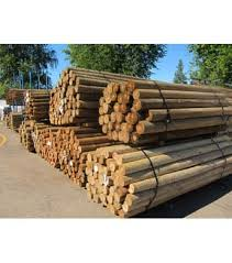 4 Treated Blunt Wood Post 12 Ft Wilco Farm Stores