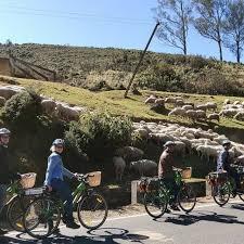 shi am eco tour cycling trekking 🚴battery electric cycle