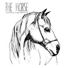 Paard Tekening Vectoren Illustraties En Clipart 123rf