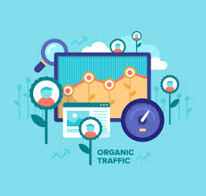 Image result for organic traffic