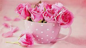 romantic good morning roses cup
