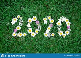Nouvelle Année 2020 Faite De Fleurs De Jardin Sur L'herbe Image ...