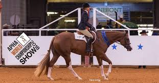 Two For One Night For Morgan Ilic And Over N Over At The 2018 Apha World Show S Breeders Trust 2 Year Old Hunter Under Saddle Stakes Apha