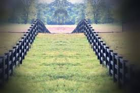 Horse Fence Horse Fencing Cost Best Animal Care