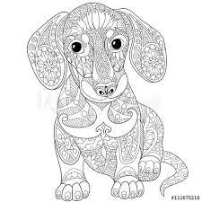 Hond 14 Dieren Kleurplaten Mandala Kleurplaten Dierentekening