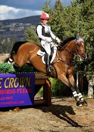 Auburn Labs Blog: Tamra Smith of Next Level Eventing Joins the APF ...
