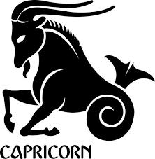Capricorn Seal Birth Sign Astrology Zodiac Vinyl Decal Car Sticker Choose Size Home Garden Children S Bedroom Boy Decor Decals Stickers Vinyl Art Ayianapatriathlon Com
