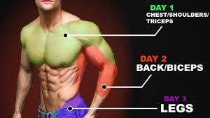 the best workout routine for s