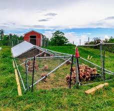 Simple Cheap And Movable Diy Chicken Tractor Chicken Pen Chicken Run Plans