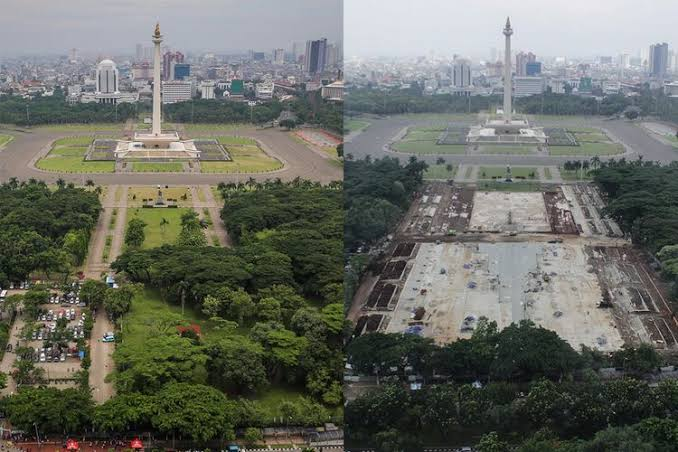 Image result for pohon monas""
