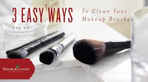 diy yl makeup brush cleaner young