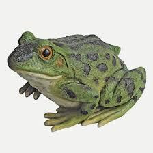 design toscano bull frog garden statue