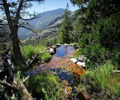 Upper Spring - Iva Bell Hot Springs - Sierra | Upper Spring … | Flickr