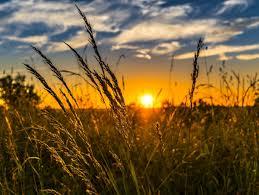 Летнее солнцестояние 21 июня 2020 года: приметы и обряды – Новости ...