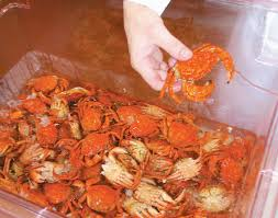 Pastries may help crab woes - Portland ...