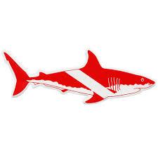 Shark Vinyl Sticker