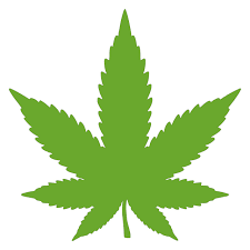 Marijuana Leaf Vinyl Decal Sticker Cannabis Hemp Pot Indica Sativa Cbd Thc Minglewood Trading